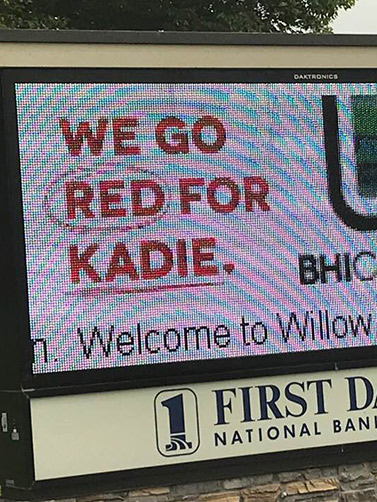 Go Red for Kadie | Fundraising for a Real-life Mulligan