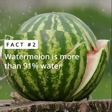 Watermelon | 20 Creative Instagram Accounts for Marketers