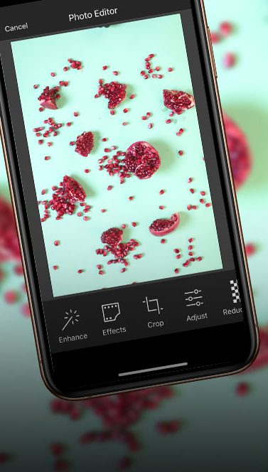 Berry Picture | Up Your Smartphone Photo Game