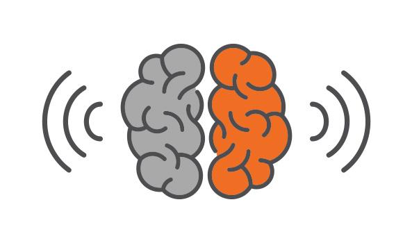 Half Brain