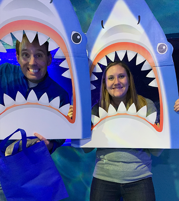 Shark Heads | Volunteer Blog