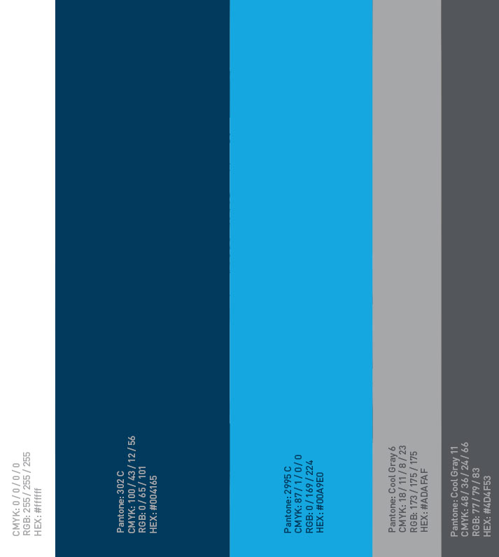 Rebrand Colors | DSU Rebrand