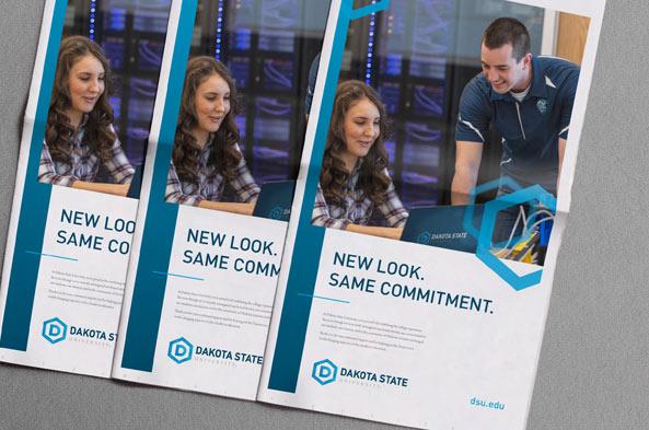 Collateral | DSU Rebrand
