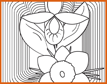State Flower | Lawrence & Schiller Coloring Pages