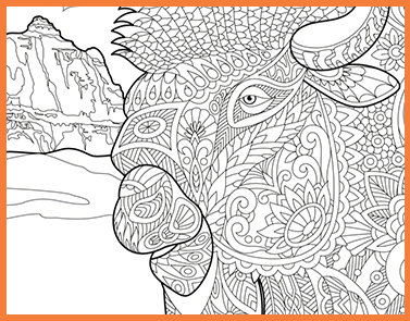 Buffalo | Lawrence & Schiller Coloring Pages
