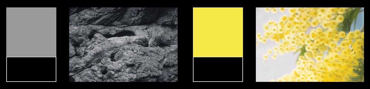 Pantone Colors | Lawrence & Schiller Blog